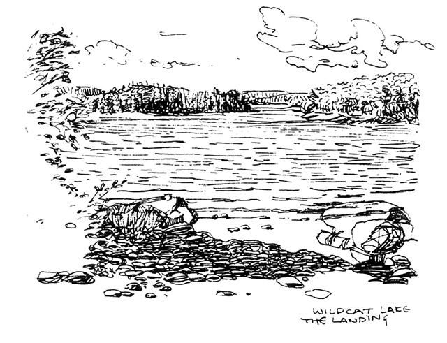 Wildcat Lake: The Landing