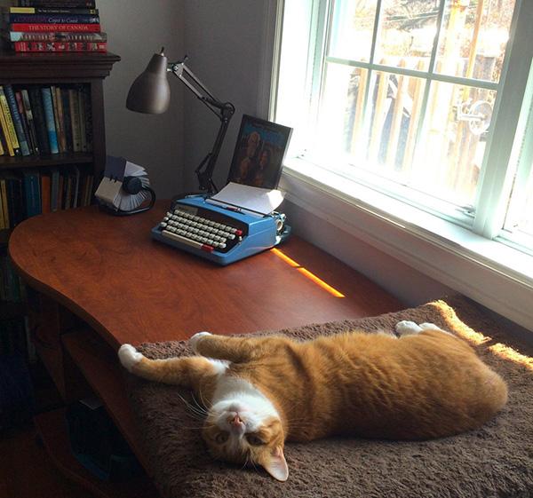 Jen Amos Writing Space