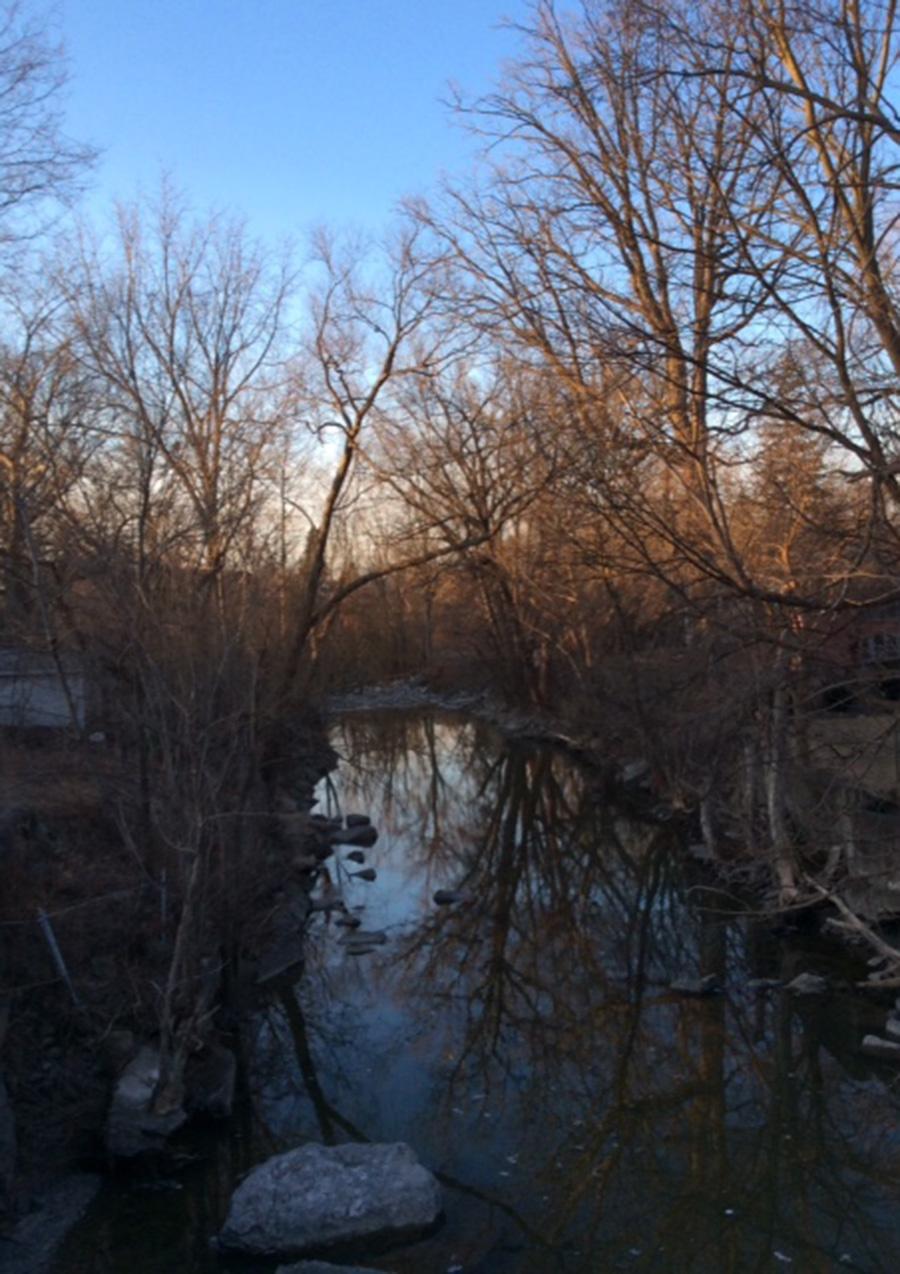 Carole Giangrande Writing Space: the footbridge over Mimico Creek