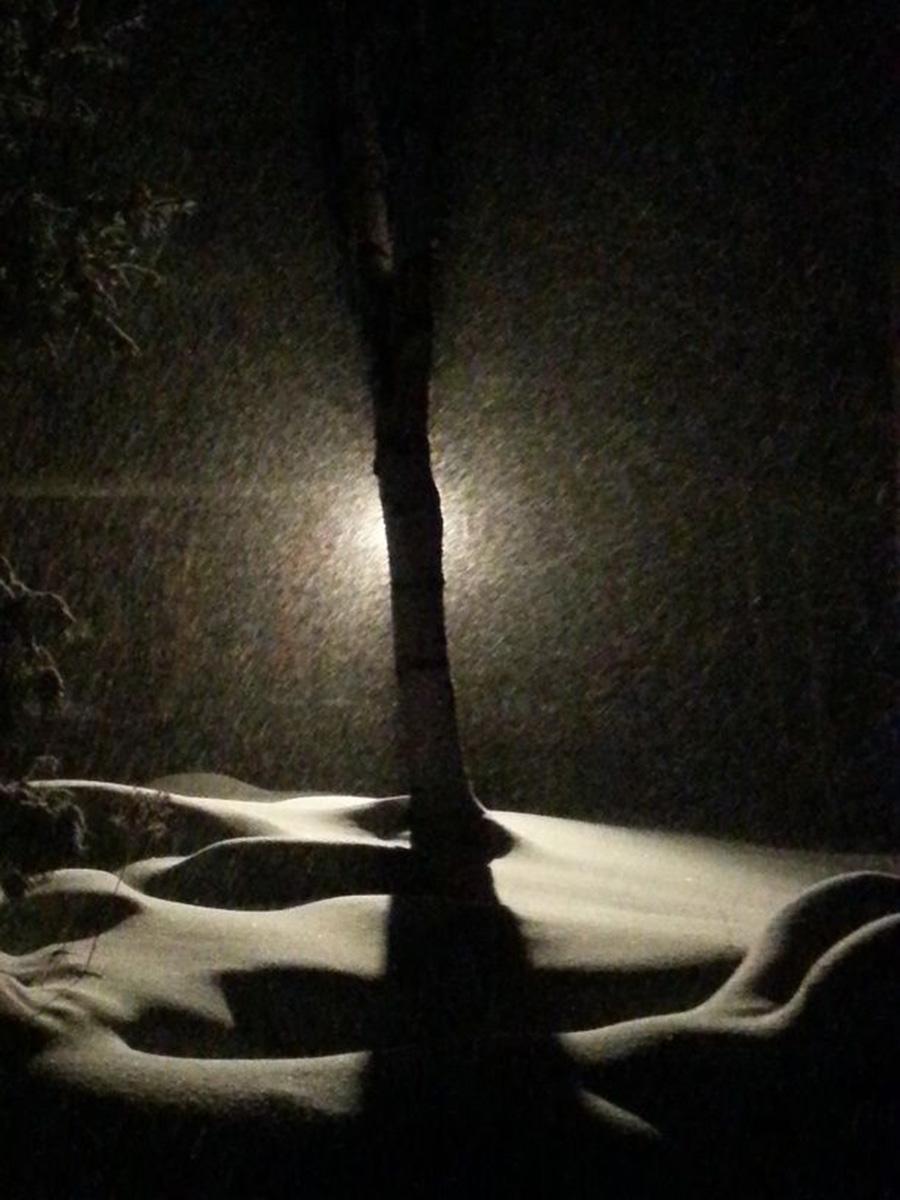 Sue Bracken Writing Space: The Cottage in winter