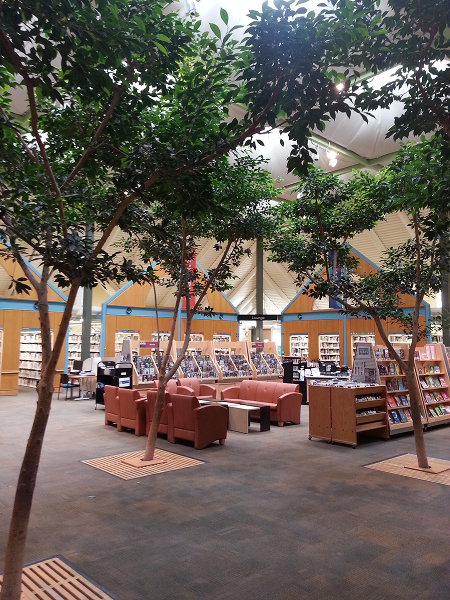 Tristan Marajh Writing Space: Markham library