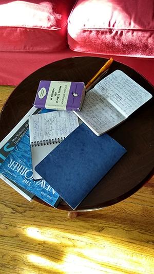 Sue Sorensen Writing Space. Notebooks.